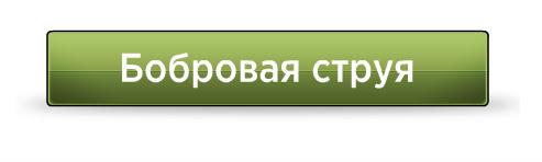 bobrovaya-struya