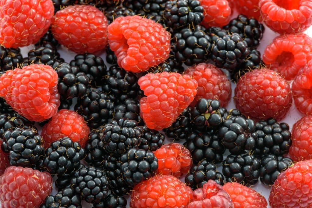 ягода малина и ежевика